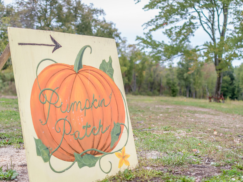 Pumpkin Patch Sign at Stony Hill Acres